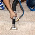 Carpet Cleaning Westbourne